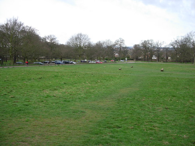 Southern end of Richmond Park