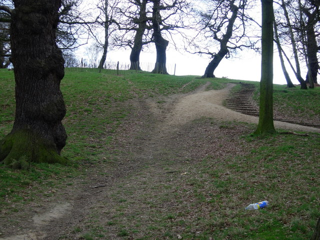 Old and new path