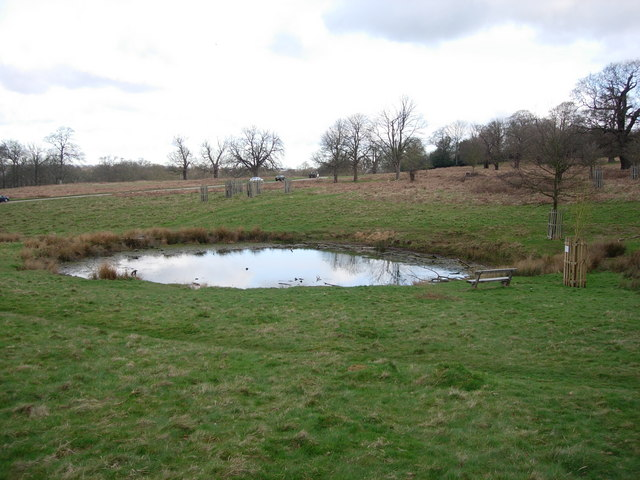Small pond hugh venables geograph britain and ireland for Small pond