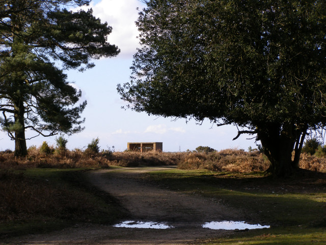 Ashley Cross, New Forest