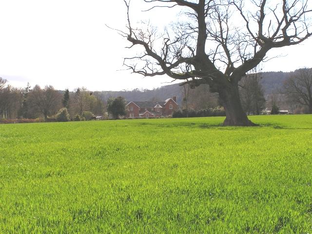 Farmland nr Moccas