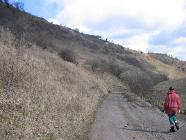The old road down Coombs Dale