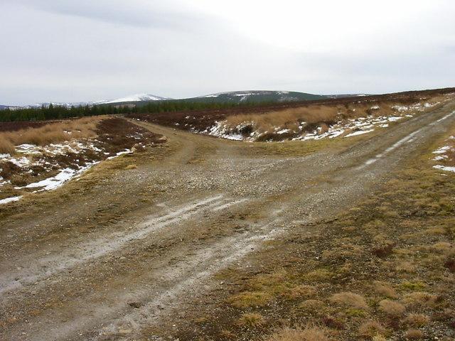 Moorland track on Scaut Hill