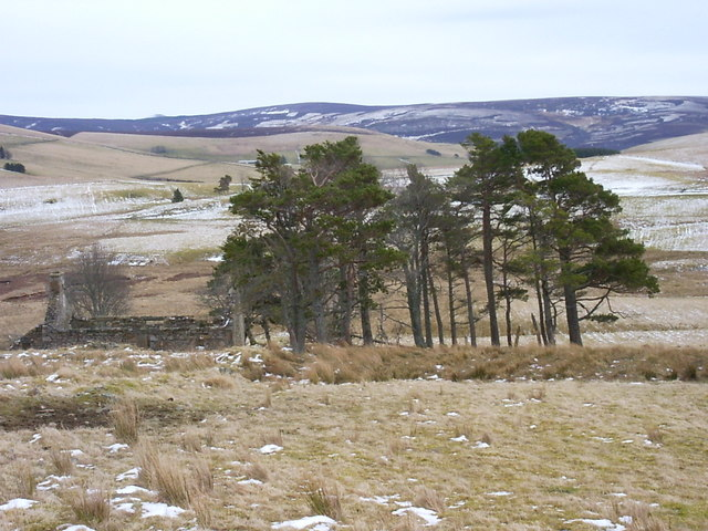 Derelict farm near Little Balloch Hill
