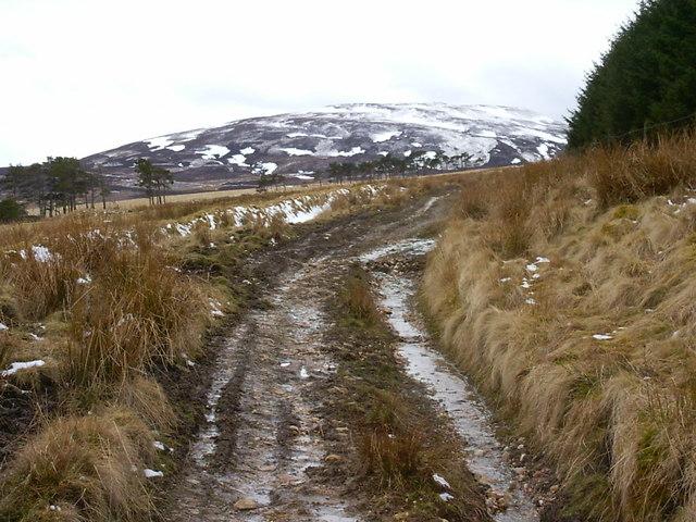 Track near Little Balloch Hill