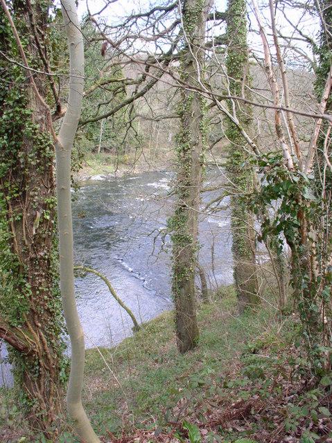 River Wye, near Abernant