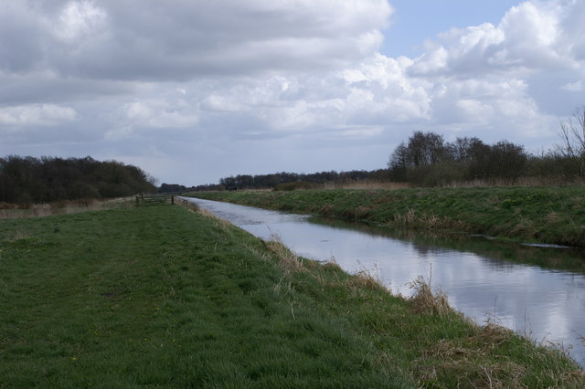South Drain on Shapwick Heath