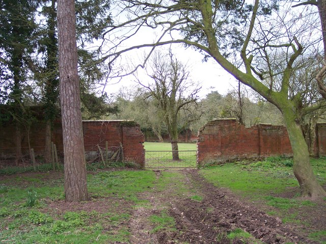 Old walled Garden, Buckland