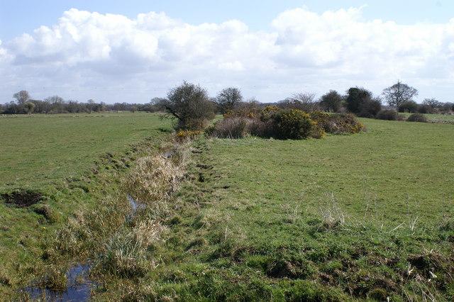 Edington Heath