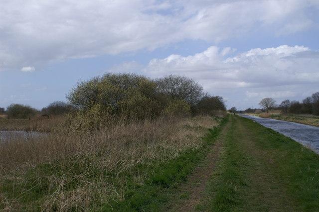 South Drain Westhay Heath
