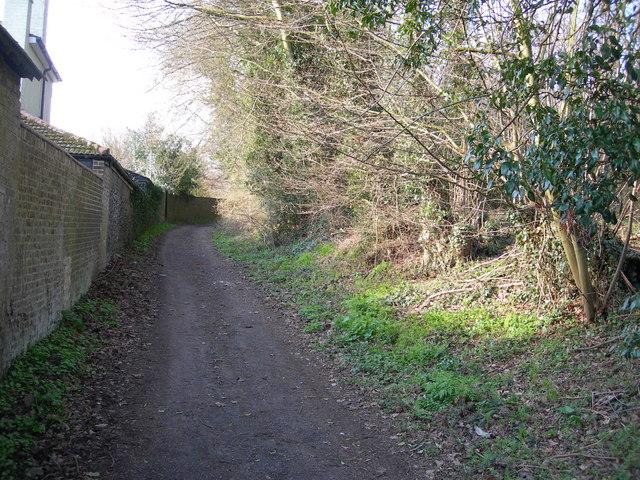 Byway near Hook Wood