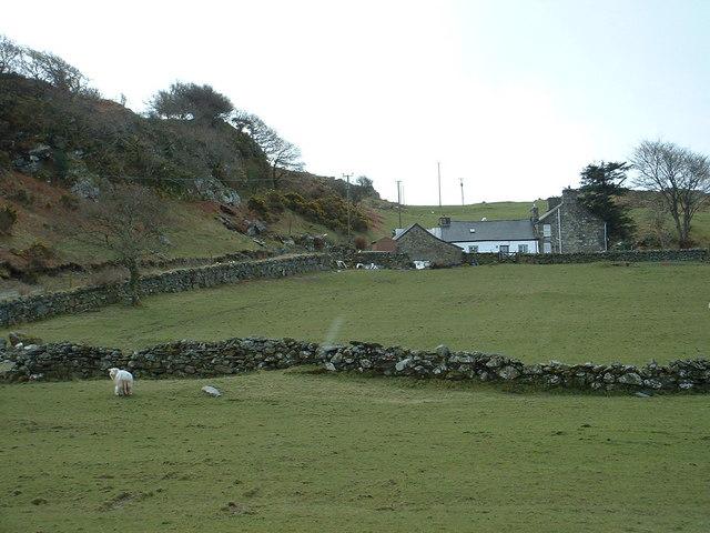 Dinas Farm