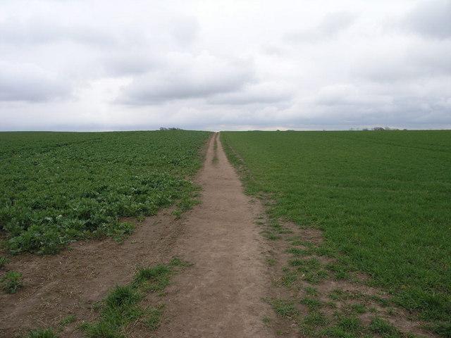 Footpath To Kiveton