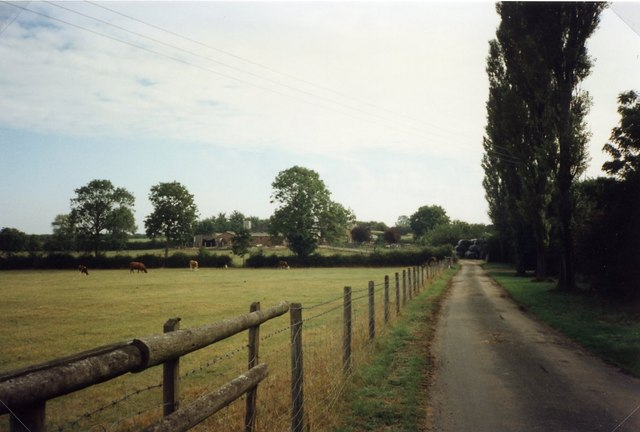 The Drive to Roundhill Farm, Nash