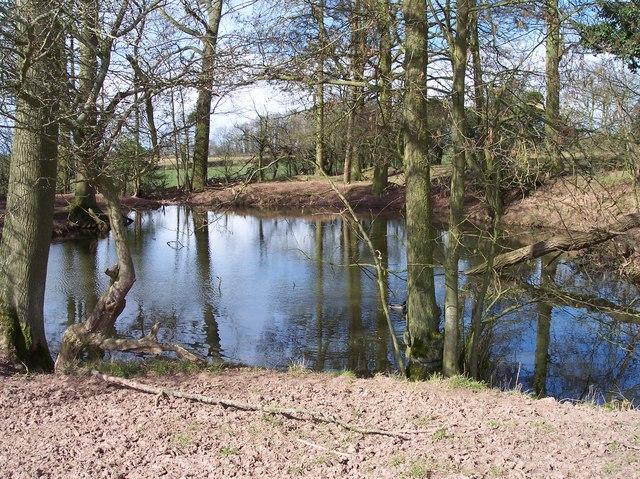 Pond, Docklow