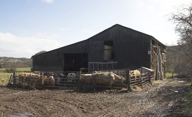 Cattle shed near Lastingham