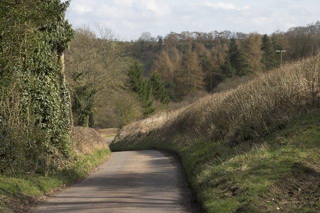 Road to Appleton Mill Farm