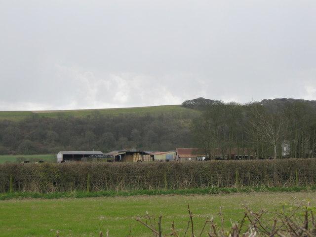 Lower Barn Farm