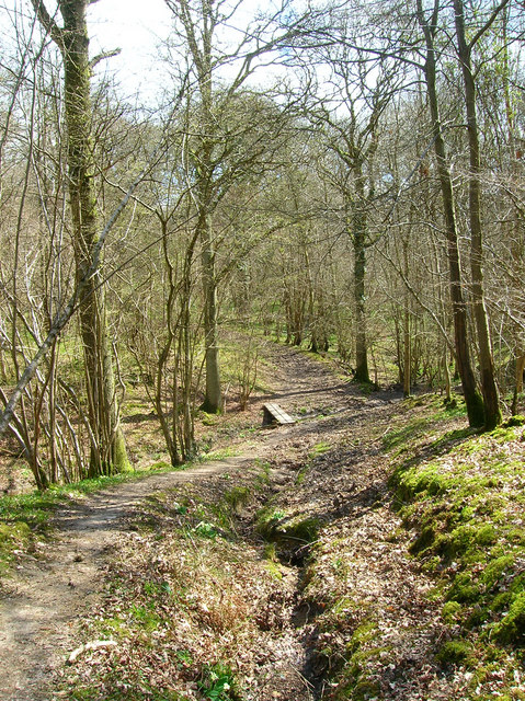 Footbridge, Capite Wood
