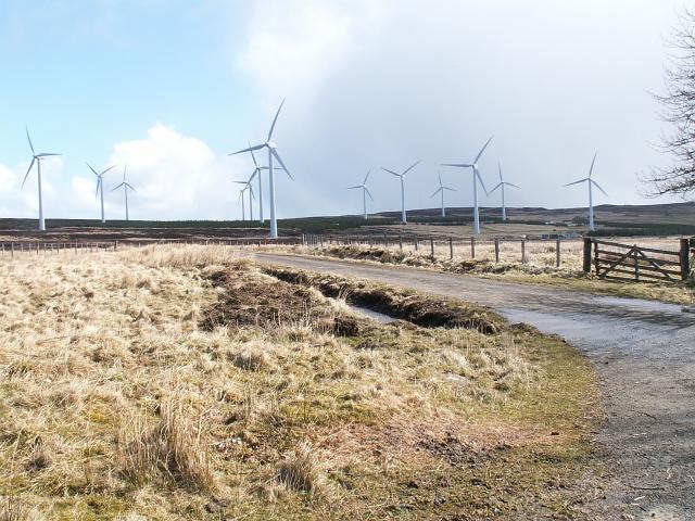 Houstry windmills