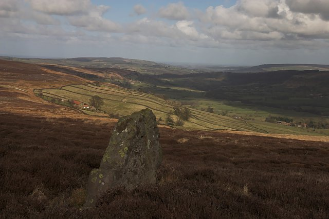 Possible orthostat on Glaisdale moor