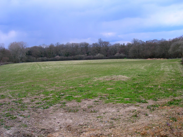 Field, Jessops Farm