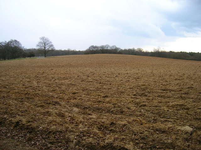 Small Hill near Furzfield Cottage