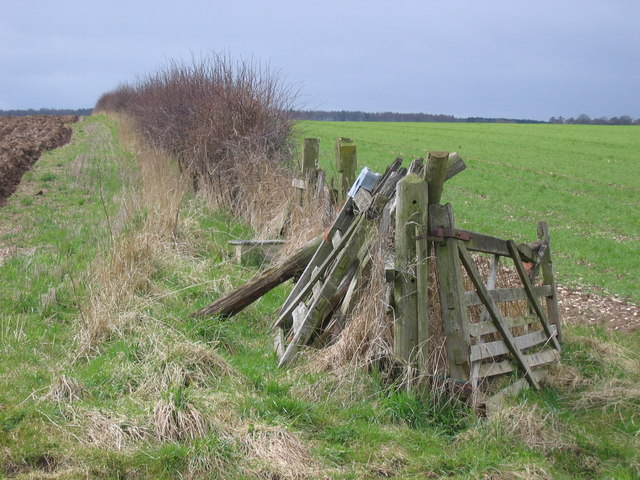 Weaverthorpe Pasture