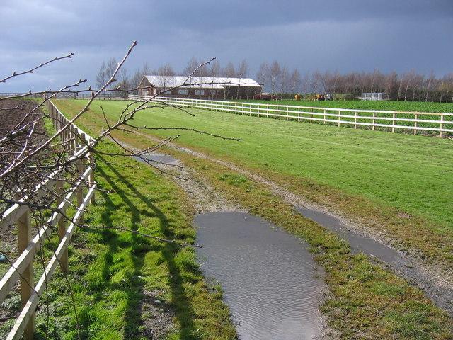 Path South of Cranswick