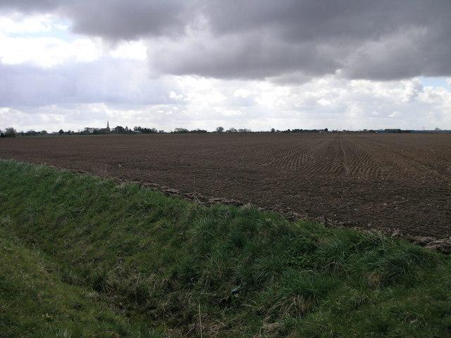 Big Flat Field 1