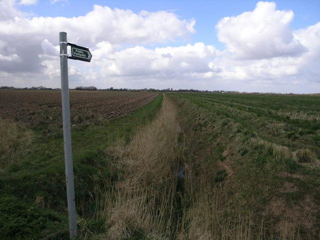 Footpath to the Horizon
