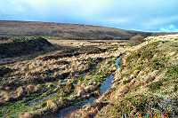 Galleven Brook - Dartmoor