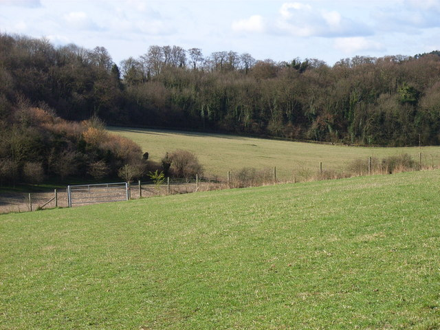 Holtspur Bottom