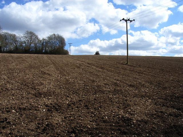 Farmland, Beamond End