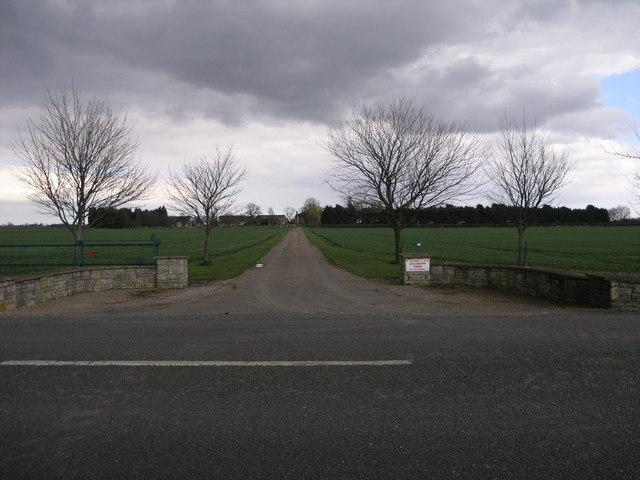 Symmetrical Drive
