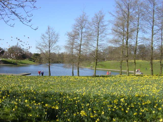 Marie Curie Field of Hope, Sefton Park