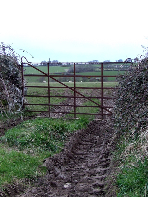 Iron gate at a muddy field entrance