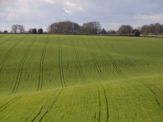 Arable farmland near Little Chalfont