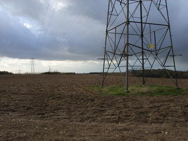 Farmland near Woodrow