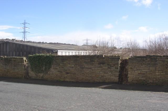 Tree stumps in wall, Dyehouse Lane, Rastrick