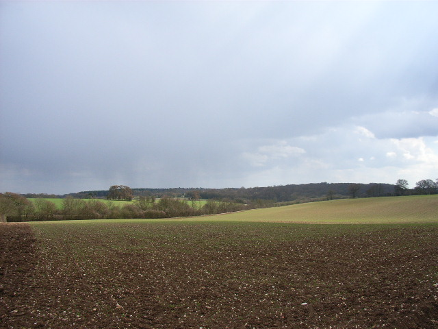 East of Coleshill