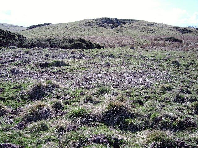 Lamberton Moor