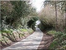 SP0166 : Cur Lane by Martin Wilson