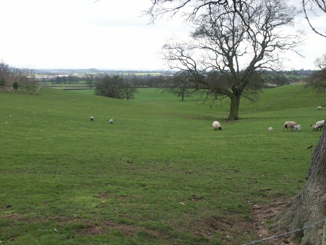 Where sheep may safely graze...