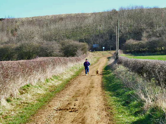 Bridleway, Old Quarrington