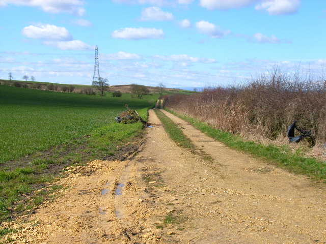 Farm road to Low Raisby, near Trimdon