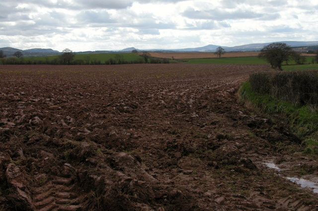 Ploughed field opposite Quarry Plantation