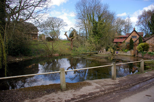 Village Pond - Little Cawthorpe