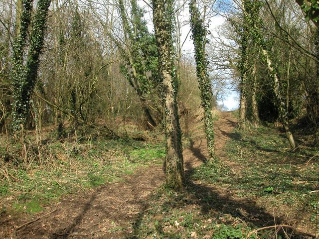 South Newington bridleway