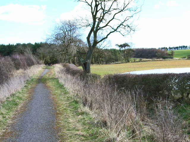 Bridleway near Humble Knowe Farm
